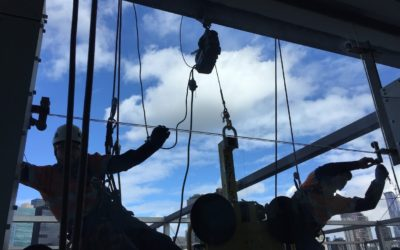 Melbourne Museum Glass Panel Replacement